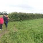 John McHugh's BDAAI farm walk